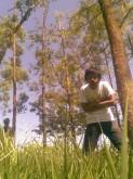 Profile Picture of Syailendra Orthega