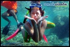 Profile Picture of Omah Wisata
